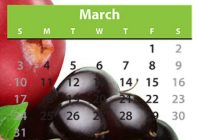 March is Nutrition Month